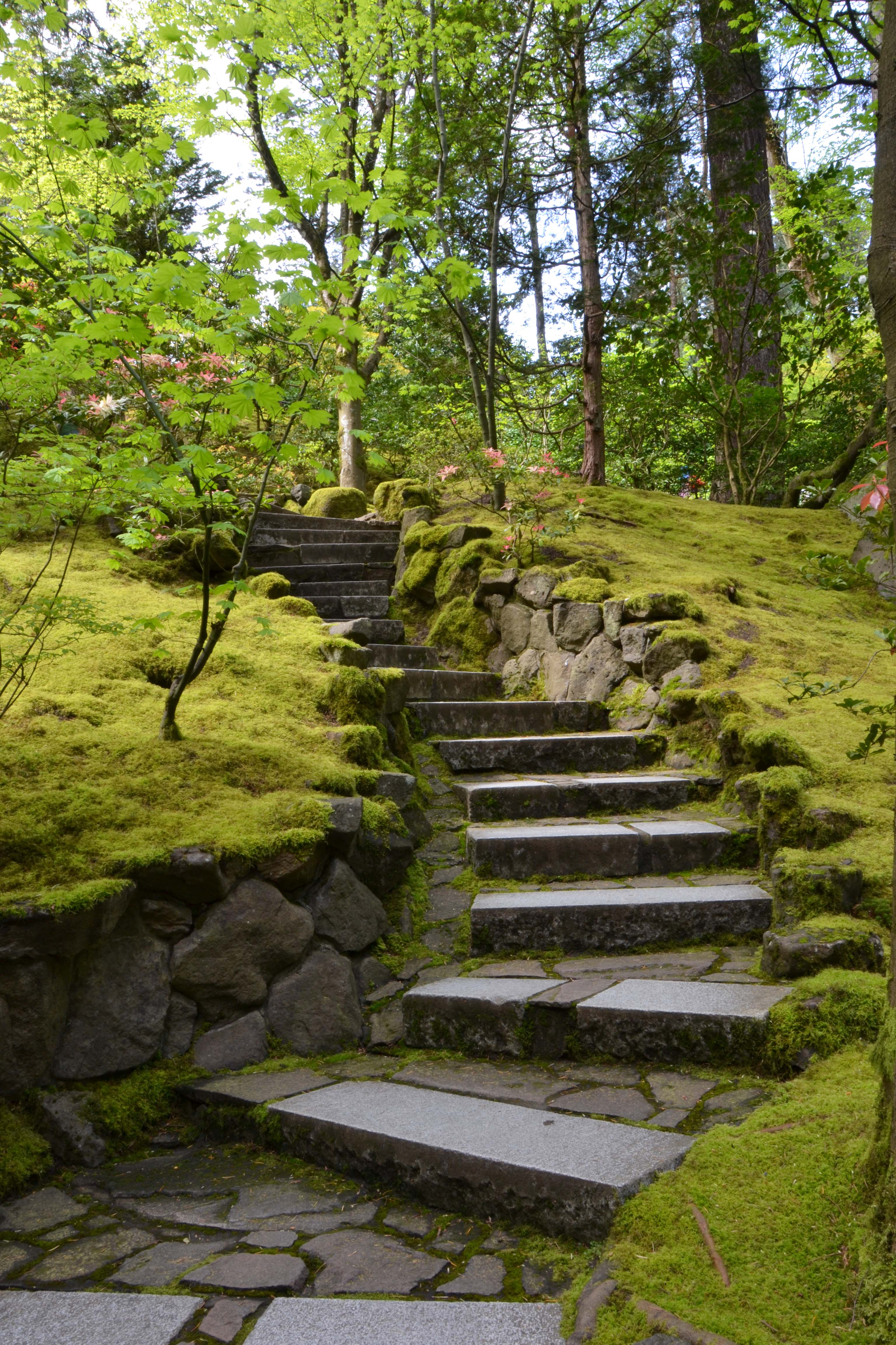 Exceptional Steep Hill Landscaping Ideas # 10: Exceptional Steep ...