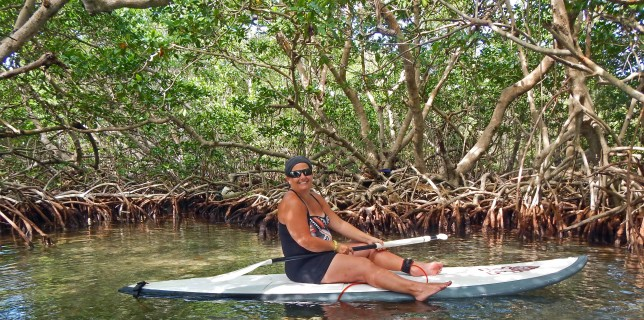 Mangrove Tour via Stand-up Paddle Boarding